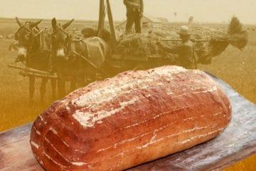 Haver en Gerstbrood